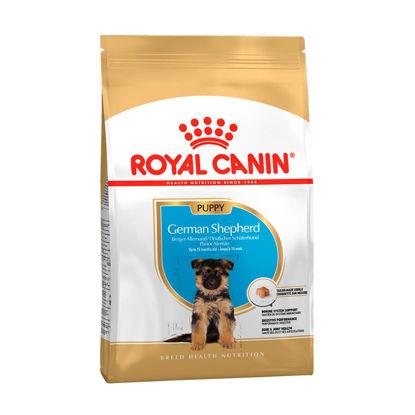 Picture of Royal Canin GERMAN SHEPHERD PUPPY  1 կգ