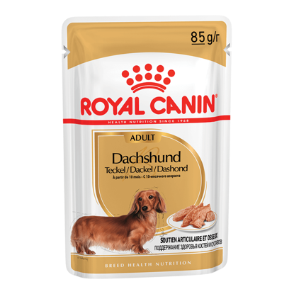 Picture of Royal Canin DACHSHUND adult pouch 12x85գ