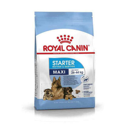 Picture of Royal Canin MAXI starter 15կգ