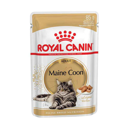 Picture of Royal Canin Maine coon pouch 12 հատ 85գ