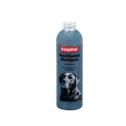 Picture of ProVitamin Shampoo - սև մազերի համար 250 մլ