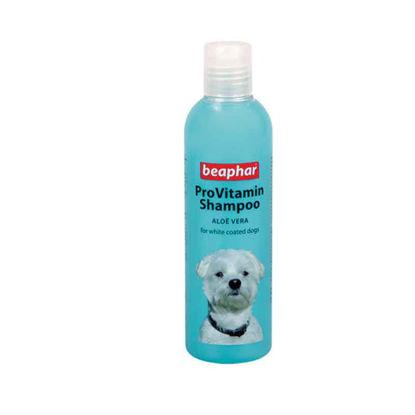 Picture of ProVitamin Shampoo- սպիտակ մազերի համար