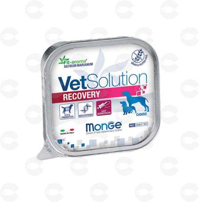 Picture of VetSolution Recovery պաշտետ շան համար