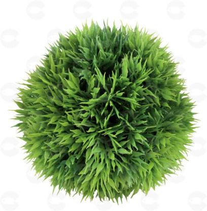 Picture of Դեկոր ակվարիումի համար բույս գնդի տեսքով