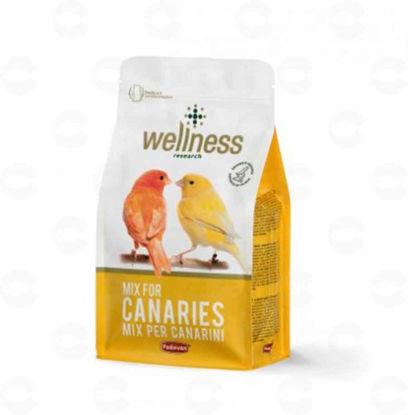 Picture of WELLNESS CANARIES Կեր դեղձանիկների համար 1կգ