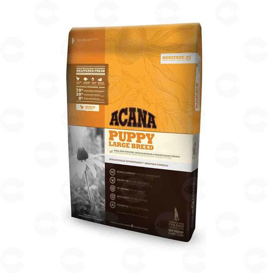 Picture of ACANA Puppy Large Breed - Չոր կեր (11,4 կգ)