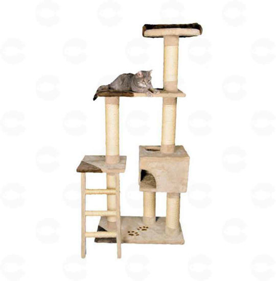 Picture of «Montoro» տնակ կատուների համար