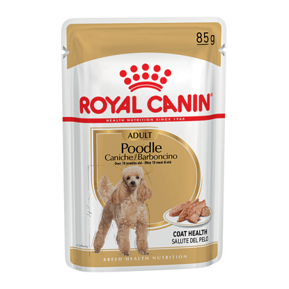 Picture of Royal Canin POODLE adult  pouch  12x85գ
