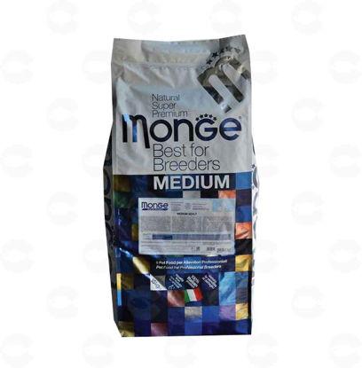 Picture of MONGE MEDIUM ADULT