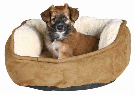 Picture of Անկողին Othello` շների և կատուների համար
