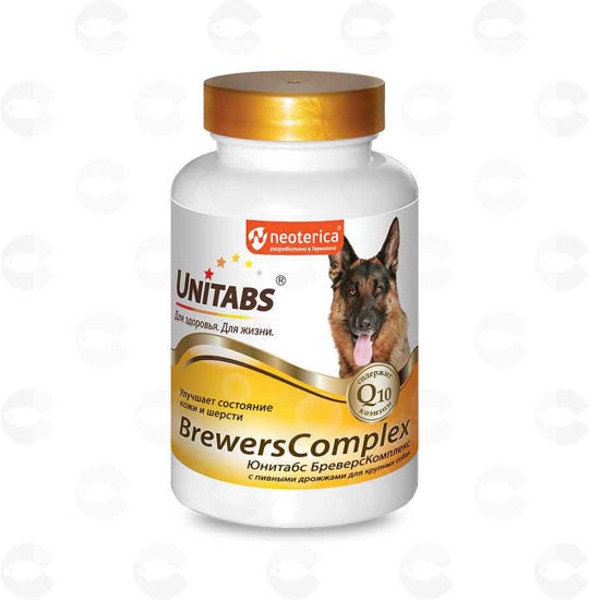 Picture of «BrewersComplex» վիտամին մեծ շների համար