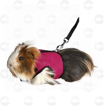 Picture of Շլեյկա ձգափոկով նեյլոնե` փոքր կենդանիների համար