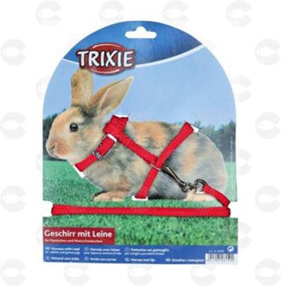 Picture of Շլեյկա ձգափոկով ճագարների համար