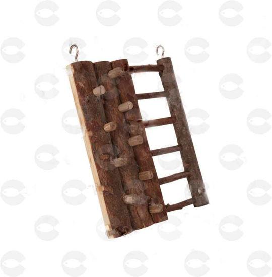 Picture of Մագլցելու պատ կրծողների համար