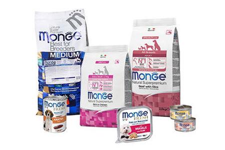 Picture for category Monge Ամենօրյա կերեր